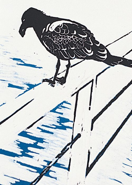 """JUVENILE PACIFIC GULL-2"" - Reduction Linocut. 15cmWx28.5cmH"